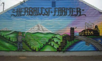 Oregon Legalizes Cannabis Dispensaries