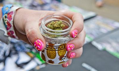 Study: Is Marijuana More Addictive for Women?