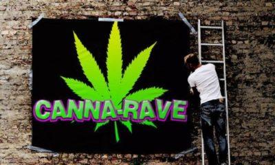 Denver Set to Host Cannabis Rave