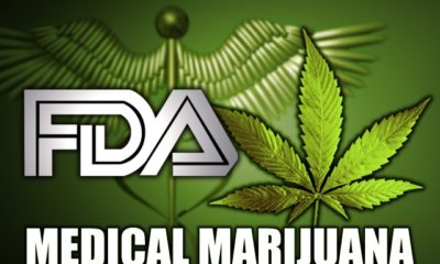 FDA Evaluates the Reclassification of Cannabis as Schedule I Substance