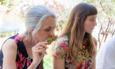 Cannabis Now Gets Certified Dank