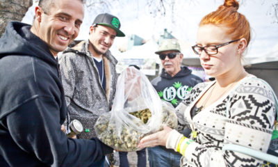 Celebrate the Spoils of Harvest at the Emerald Cup
