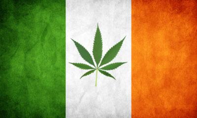 Ireland Considers Cannabis Legalization