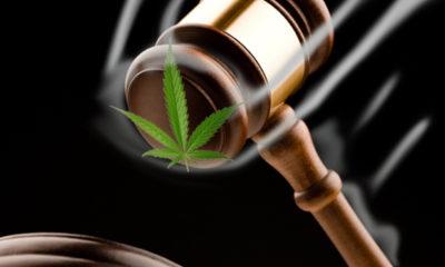 Judge Continues to Block Restrictive Montana Medical Marijuana Law
