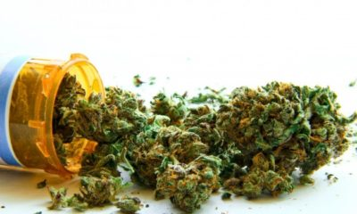 Expanded Medical Cannabis Bill to be Filed in Utah Senate