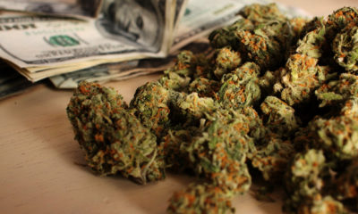 Eight Cannabis Entrepreneurs to Watch in 2014